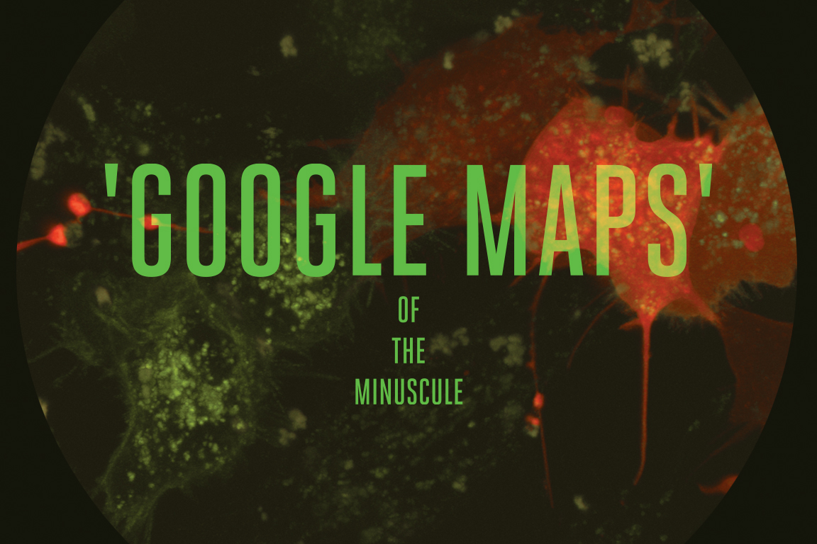 text graphic that says 'Google Maps for the Miniscule'