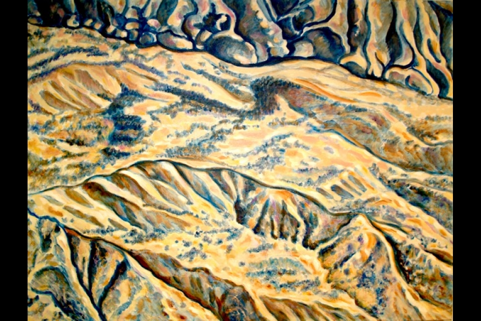 a view from a plane of mountainous terrain cut by ravines